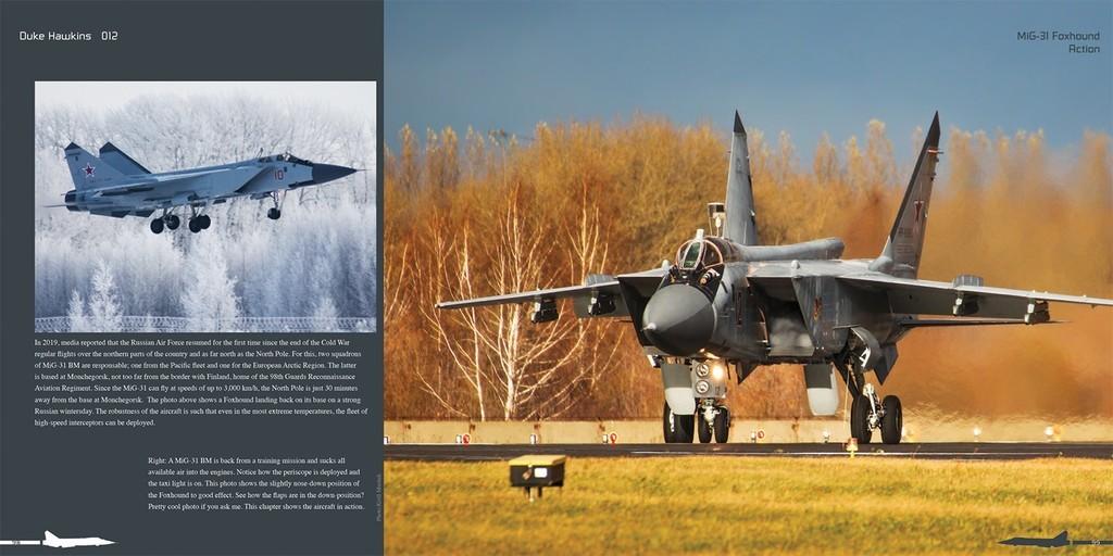 DH012 - MiG 31-002.jpg