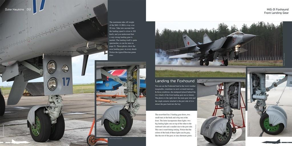 DH012 - MiG 31-006.jpg